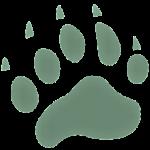 www.bearconservation.org.uk