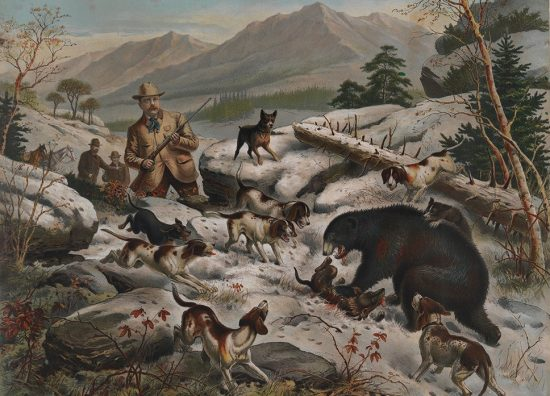 President_Roosevelt_Bear_Hunting,_The_Bear_At_Bay_(15075483168)